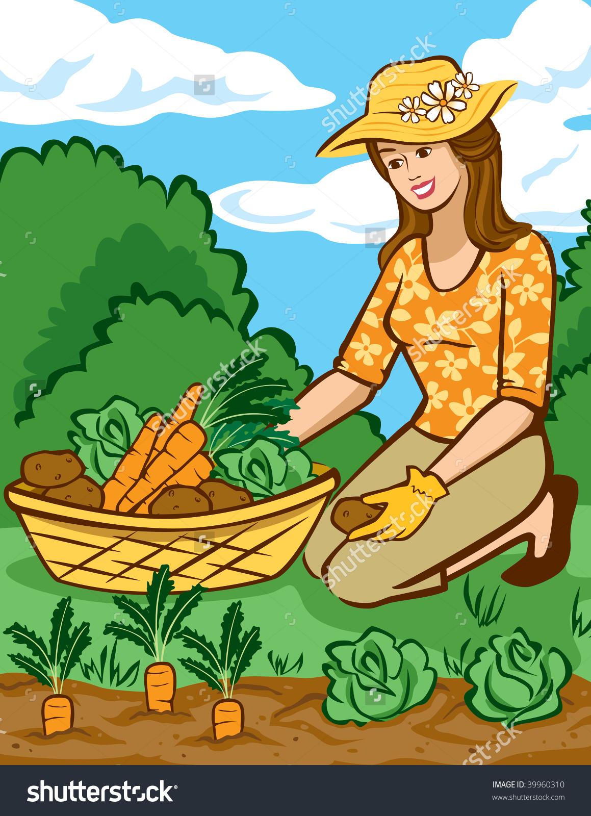 Growing Vegetables Home Garden Stock Vector 39960310.