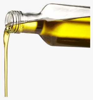 Free Olive Oil Clip Art with No Background.