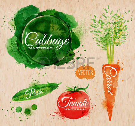 12,019 Eco Vegetable Stock Vector Illustration And Royalty Free.