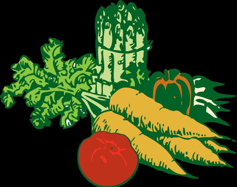 Vegetable Plant Clipart.