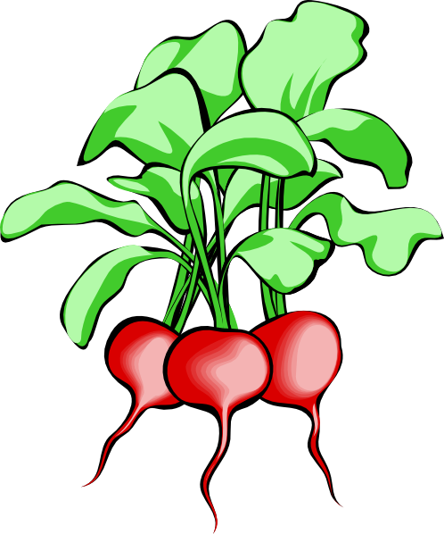 Free Vegetable Garden Clipart, Download Free Clip Art, Free.