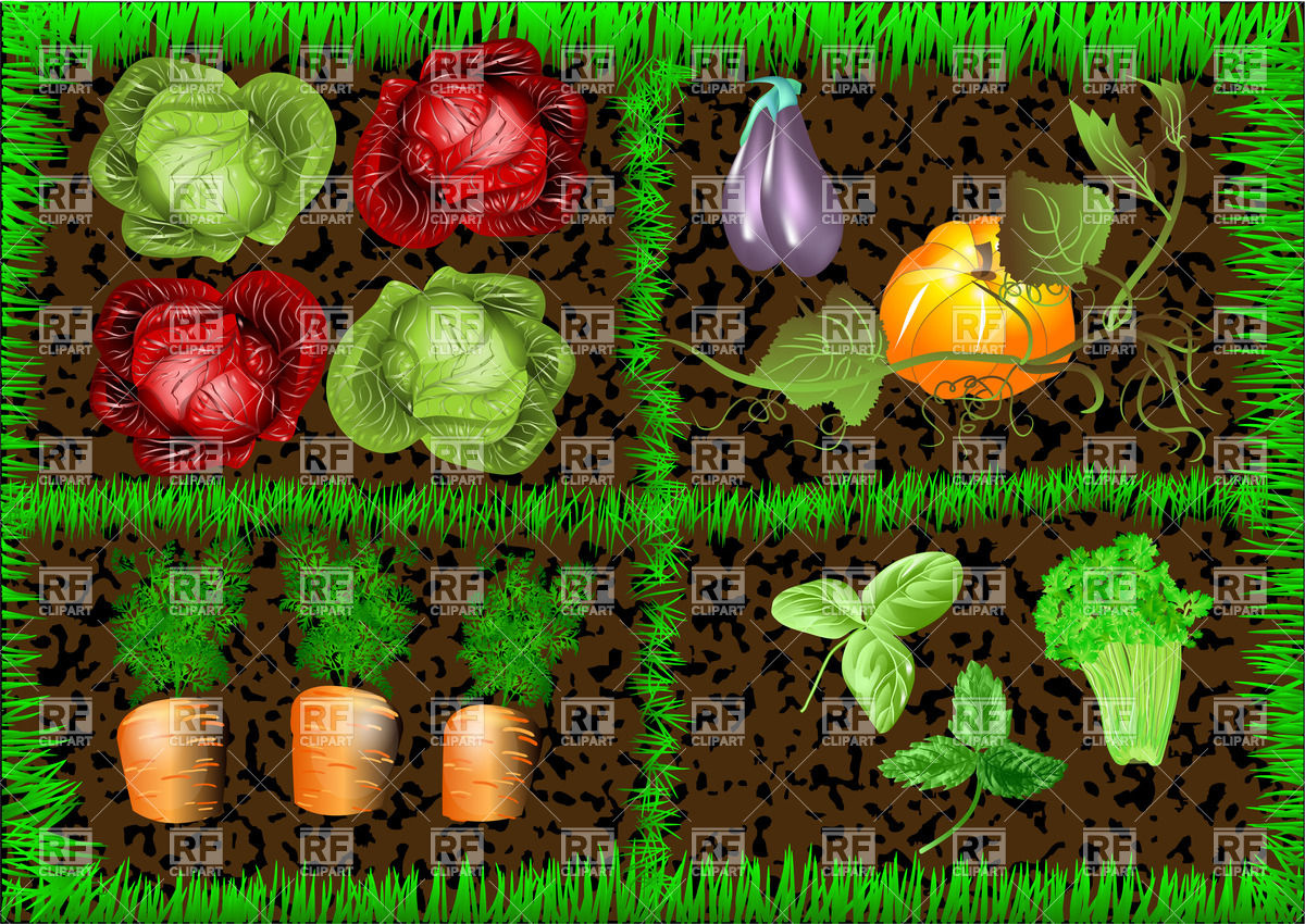 Vegetable Gardening Clipart.