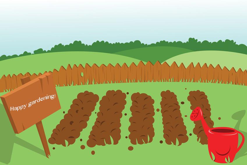 Gardening guide for beginners.