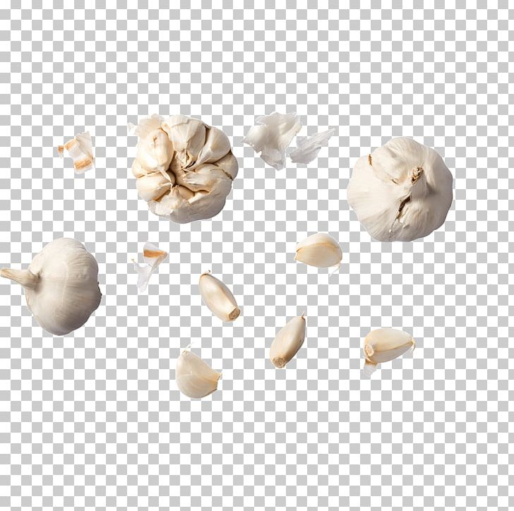 Garlic Food Ajoblanco Vegetable PNG, Clipart, Ajoblanco.
