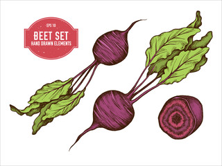 Beetroot Illustration photos, royalty.