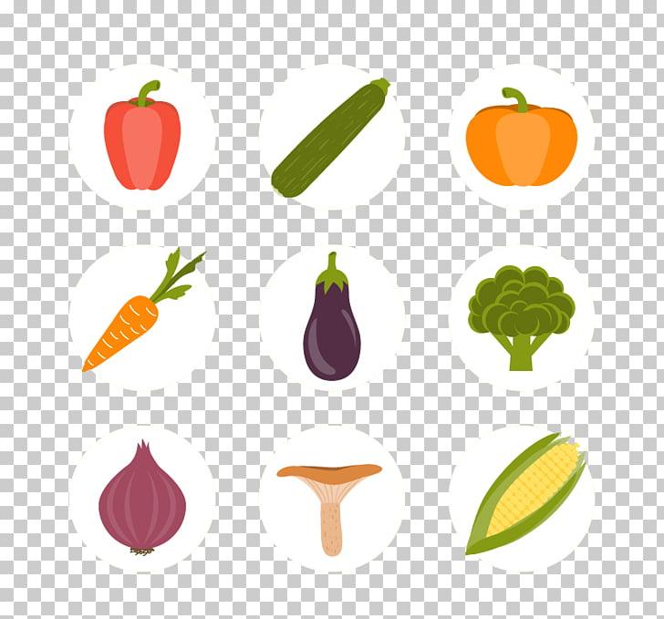 Maize Euclidean Corncob Icon, Cute little vegetables icon.
