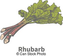 Rhubarb Clip Art and Stock Illustrations. 61 Rhubarb EPS.
