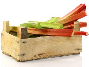 1000+ ideas about Rhabarber Obst Oder Gemüse on Pinterest.