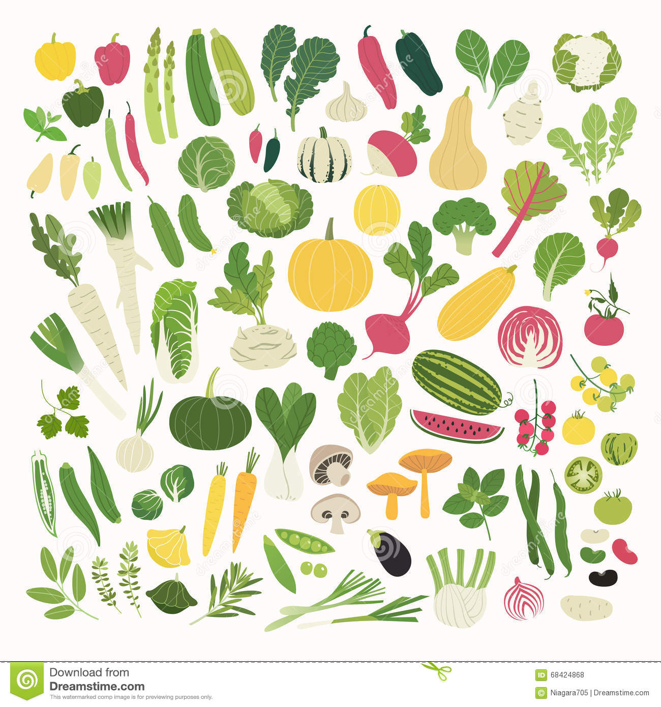 Vegetables And Herbs Stock Vector.