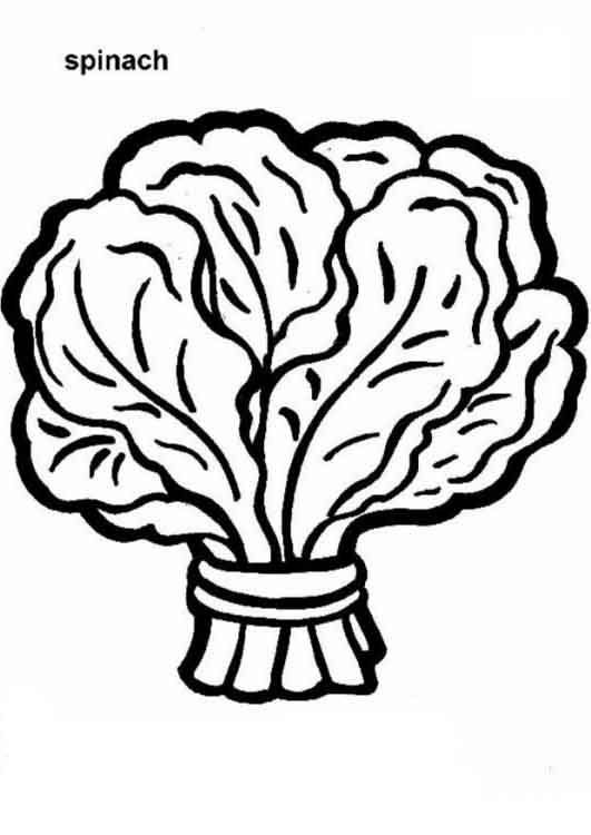 Spinach clipart black and white.