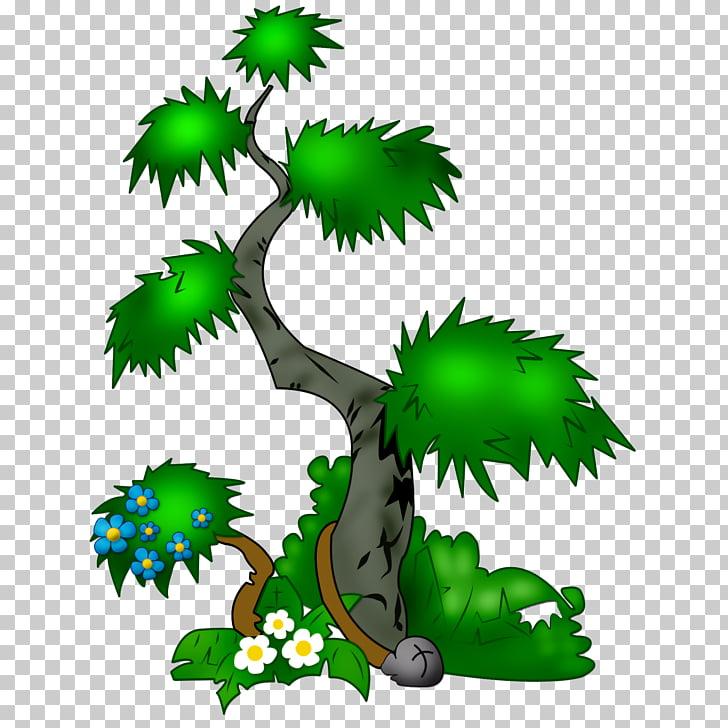 árbol, vegetación PNG Clipart.