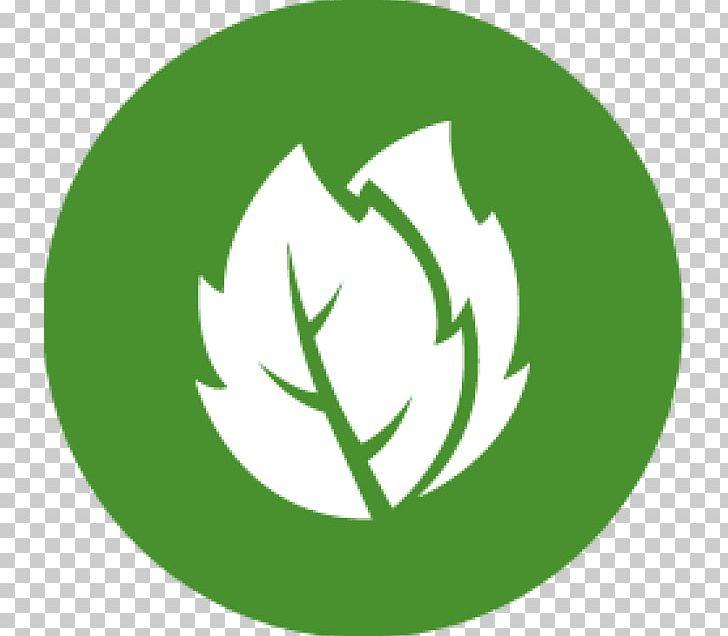 Veganism Vegetarian Cuisine Vegetarianism Logo V.