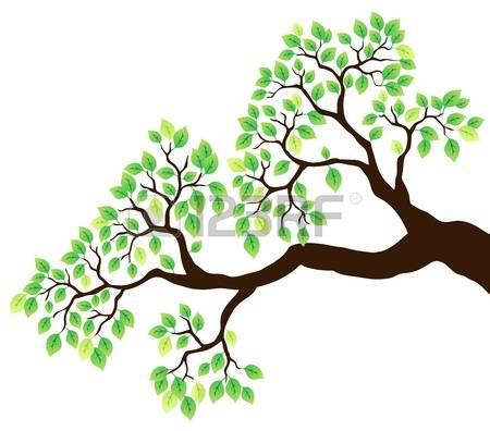16,018 Vegetation Leaf Stock Vector Illustration And Royalty Free.