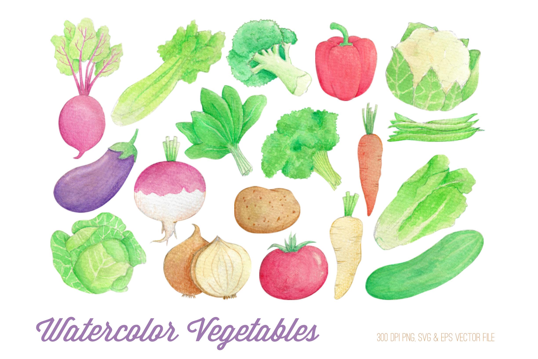 Watercolor Vegetables Clipart.