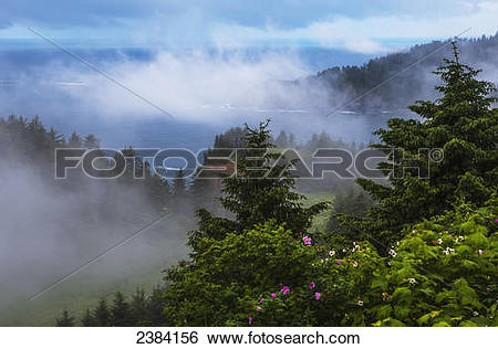 Stock Images of A veil of mist softens the view of the coastline.