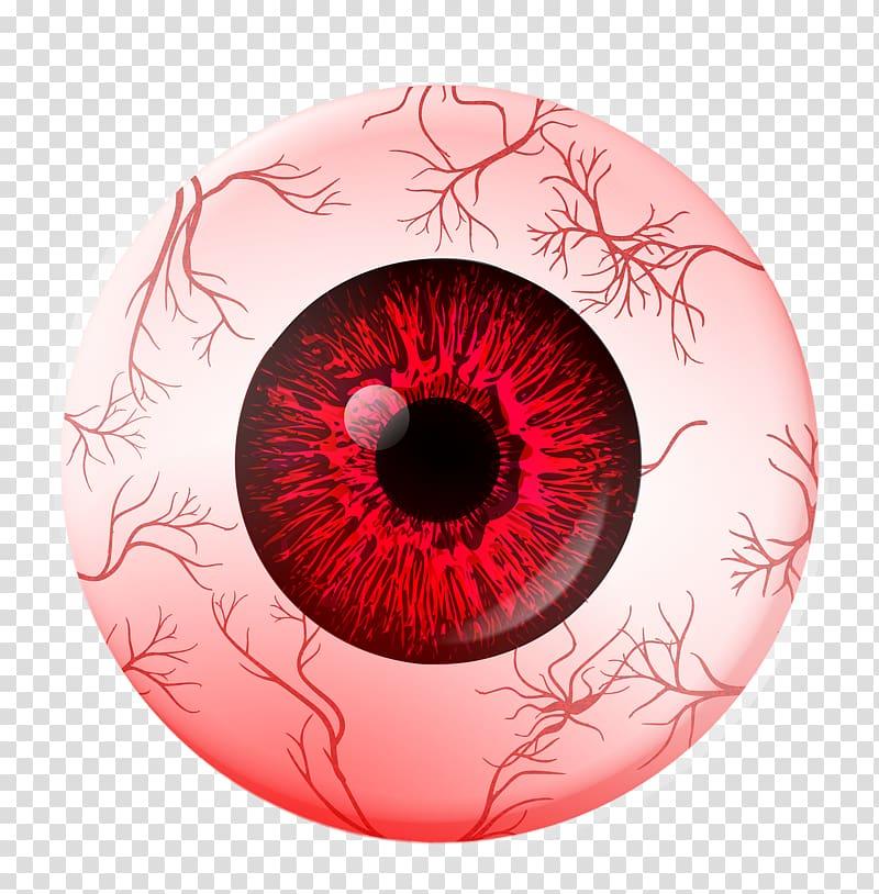 Red eye Extraocular muscles Human eye Eye movement, veins.