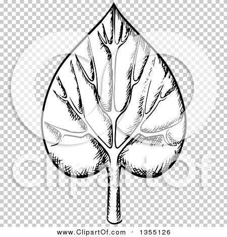 Clipart of a Black and White Sketched Veined Leaf.