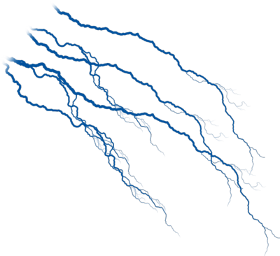 Veins PNG Transparent Images.