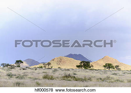 Pictures of Africa, Namibia, Namib.
