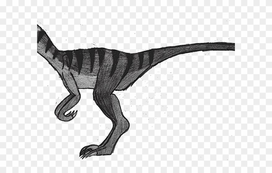 Velociraptor Clipart Black And White.