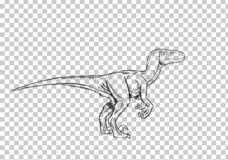 Velociraptor Troodon Tyrannosaurus Dilophosaurus Dinosaur.