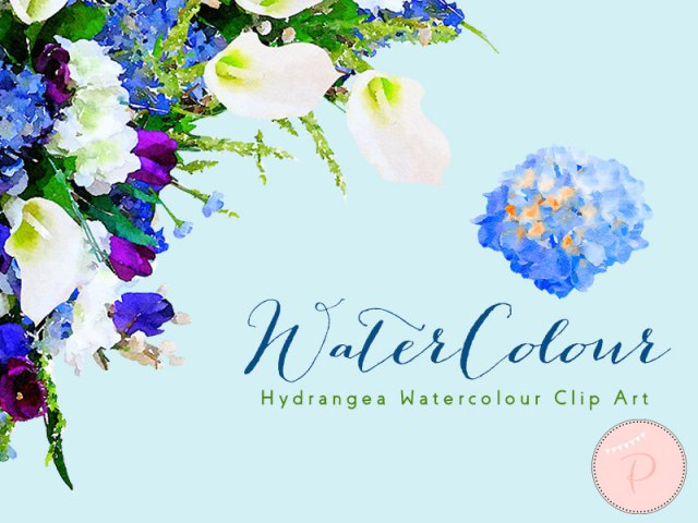 wca13 Watercolor Hydrangea Flower, Floral Frame Clip art,2.