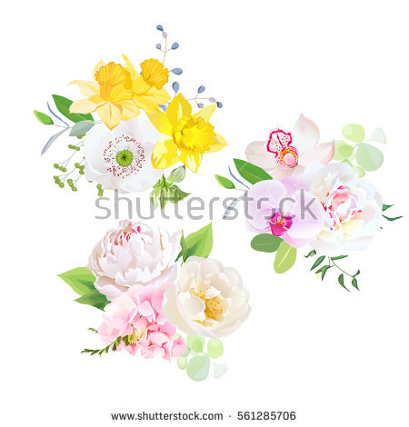Yellow Hydrangeas Stock Photos, Royalty.