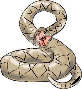 Rattle Snake Clip Art.
