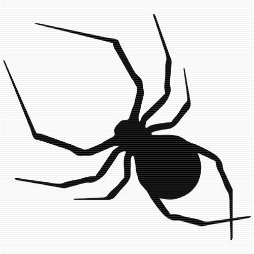 Venomous Spider Clip Art.