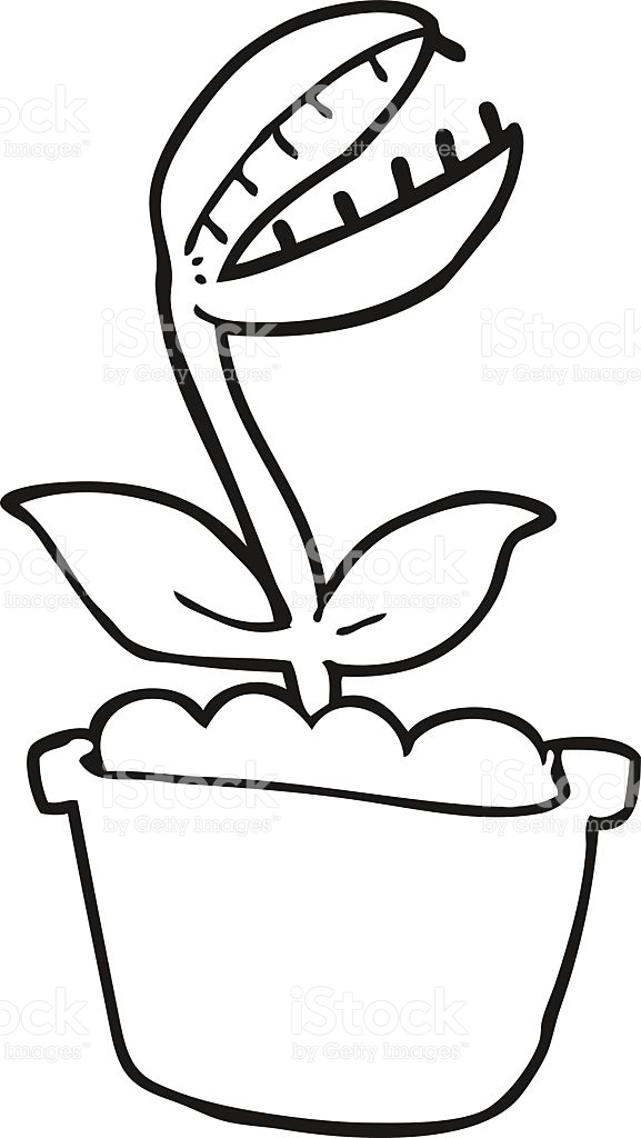 Venus Fly Trap Clipart Black And White.