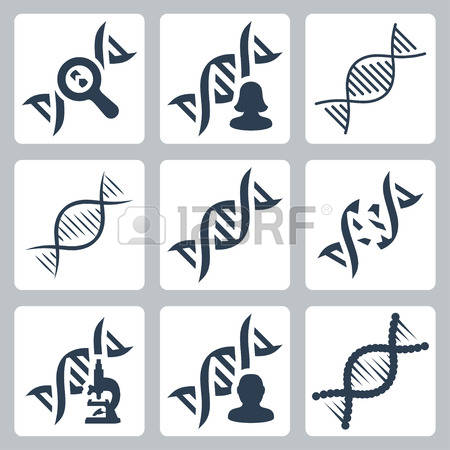 Gene Stock Photos Images. Royalty Free Gene Images And Pictures.