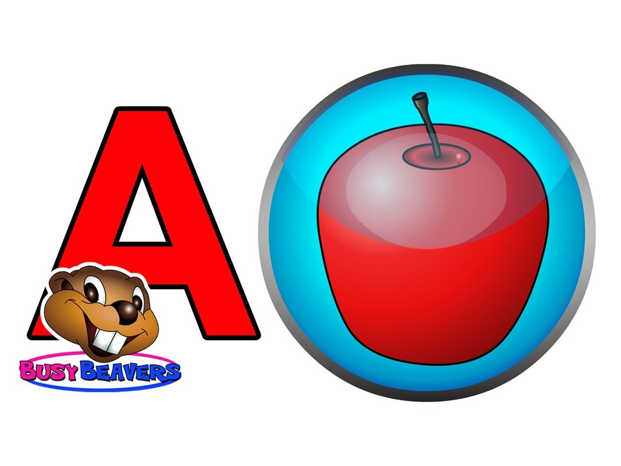 Download beaver clipart Video Clip art.