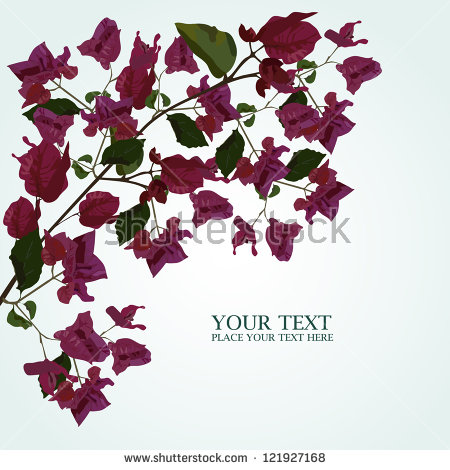 Bougainvillea flower free vector download (9,939 Free vector) for.