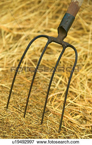 Picture of Pitchfork and Straw u19492997.