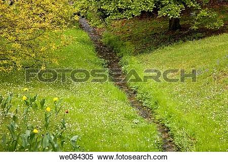 Stock Image of Villa Taranto botanical gardens, Verbania. Lake.