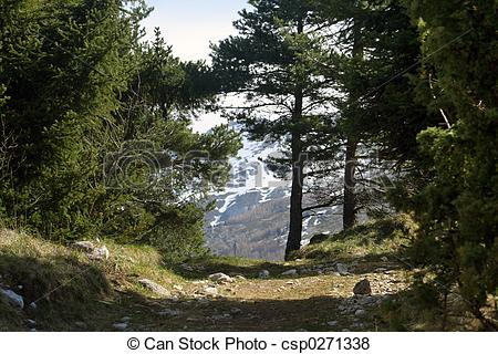 Pictures of le vercors.