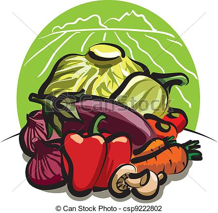 Vector Illustration of vegetable harvest.