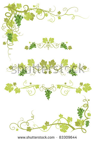 Grape Vine Stock Images, Royalty.