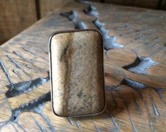 Petrified wood ring.