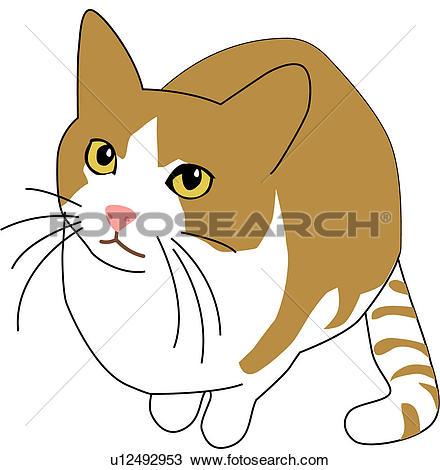 Clipart of land animal, flower, mammal, vertebrate, animal, cat.