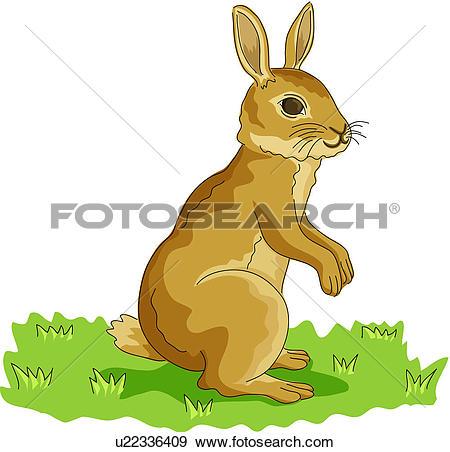 Clipart of fortune, vertebrate, rabbit, land animal, mammal.