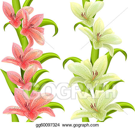 Vertical flourish lilly clipart clipart images gallery for.