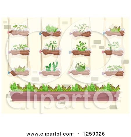 Clipart of a Vertical Garden on a Brick Wall.