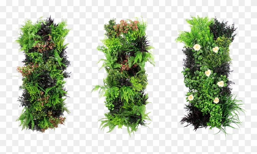 Artificial Vertical Garden, HD Png Download.