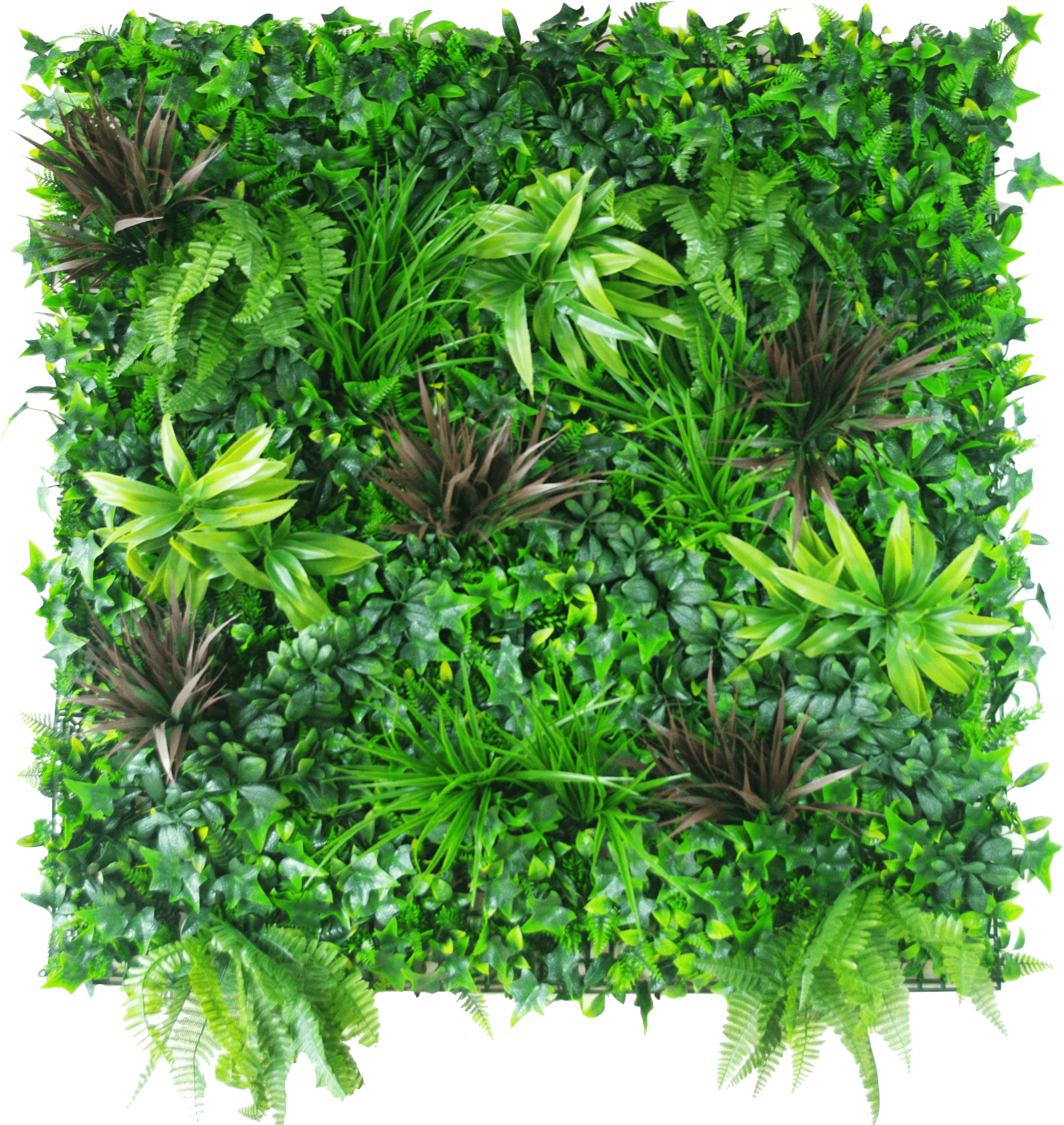 HD Coastal Greenery Vertical Garden.
