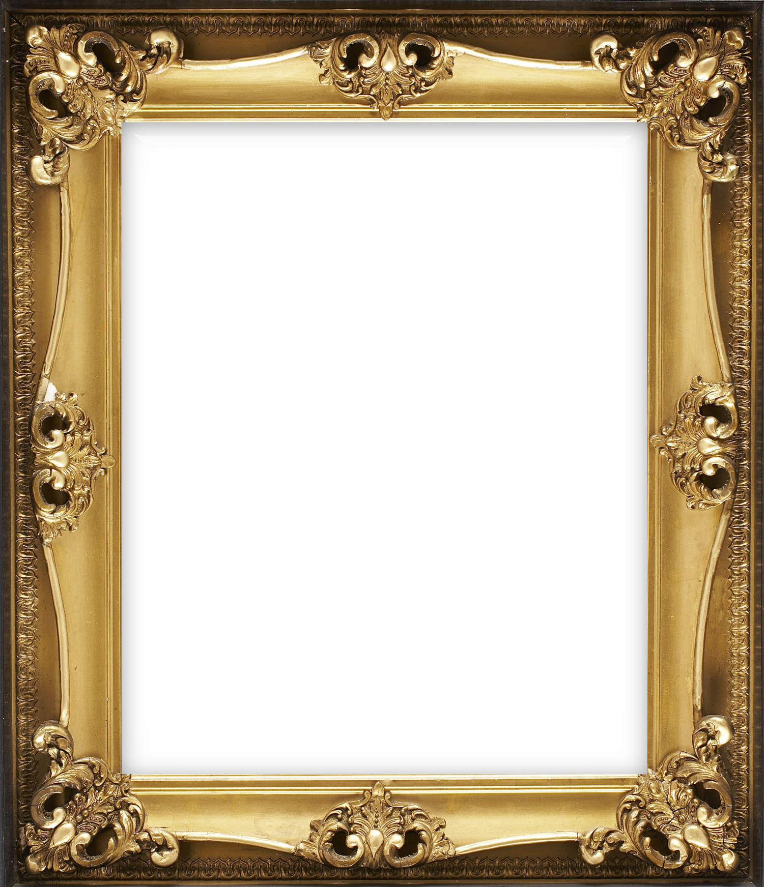 Vertical Classic Transparent Frame with Ornaments.