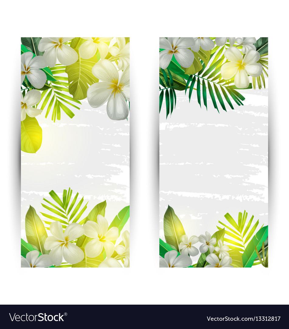 Summer vertical banner.