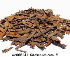 Cinnamomum verum Stock Photo Images. 623 cinnamomum verum royalty.