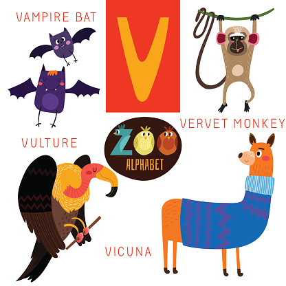 Vervet Monkey Clip Art, Vector Images & Illustrations.