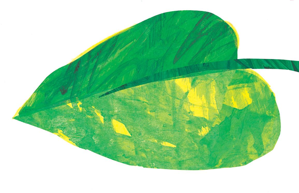 Caterpillar On Leaf Clipart.
